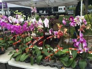 KCC Market Saturday's July 2014